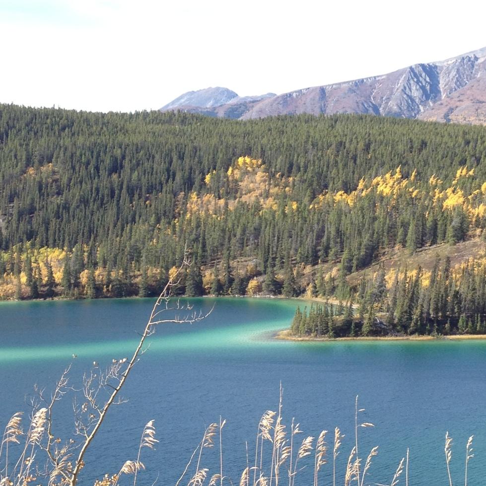 Emerald Lake (19)
