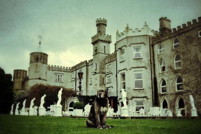 At least one of your nights should be in one of Irelands numerous centuries old castles